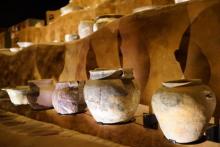 河姆渡文化遗存(距今7000年前)